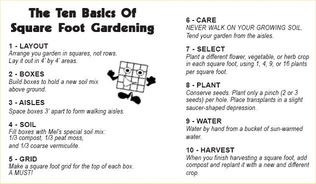 http   www squarefootgardening com. Square foot gardening   Allotments4All