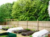 Allotment Gallery